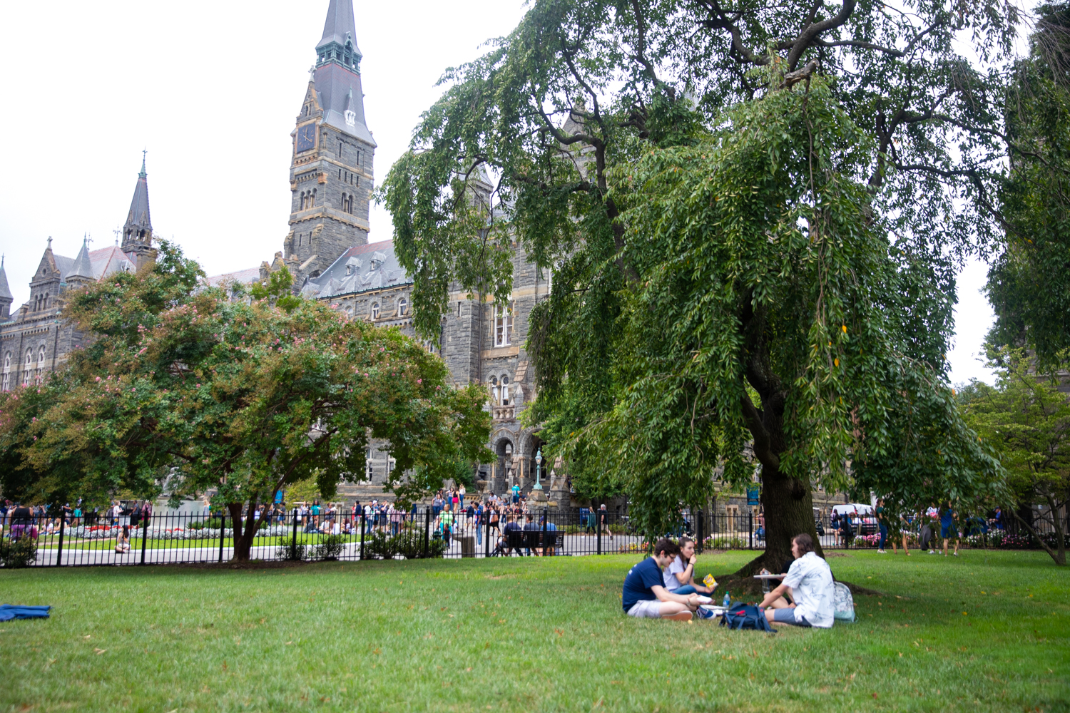 Students sit on Healy Lawn and chat on a sunny day, Healy Hall is in the background