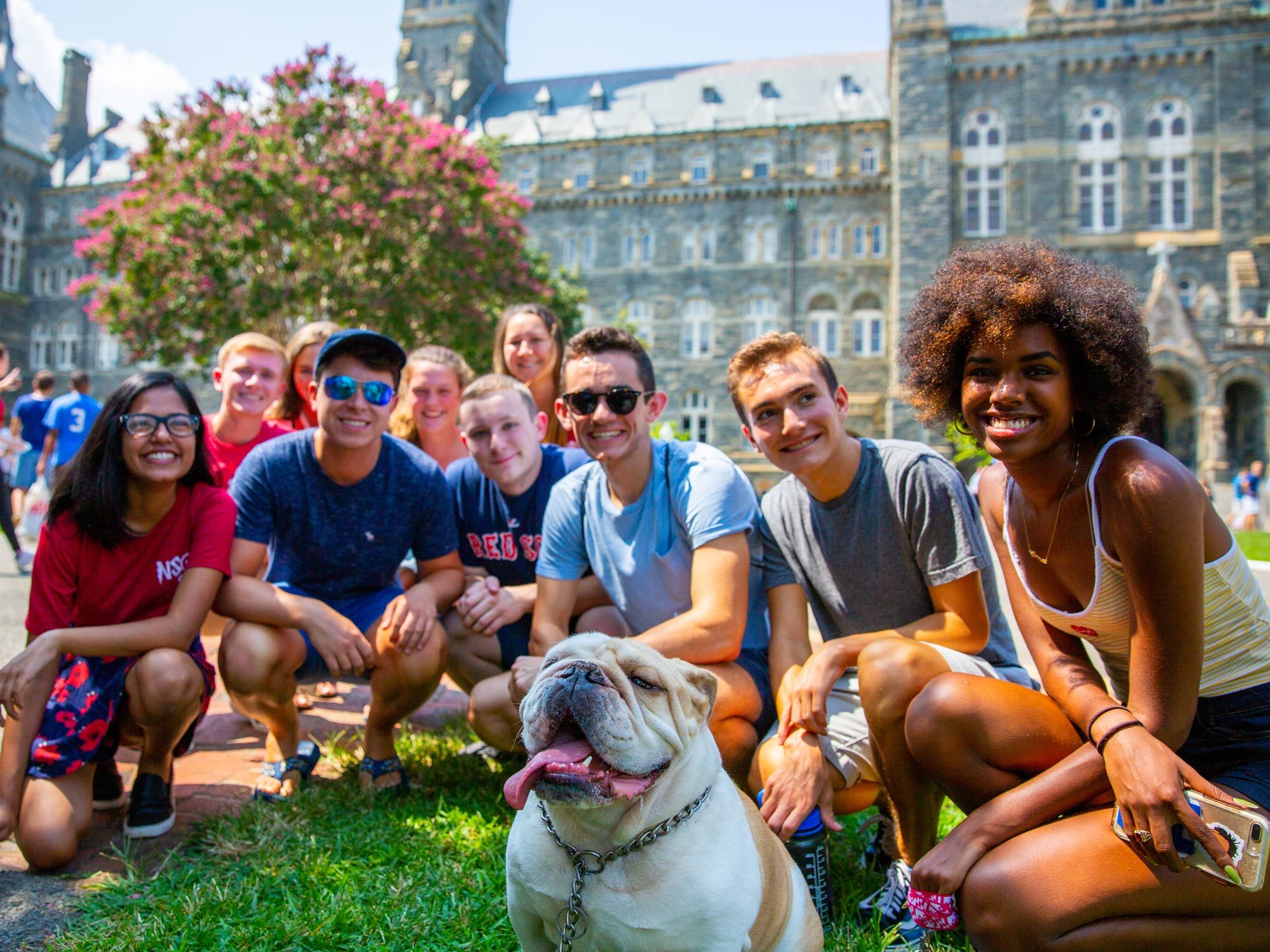 A group of students sit infront of Healy Hall, posing for a photo with Jack the bulldog.