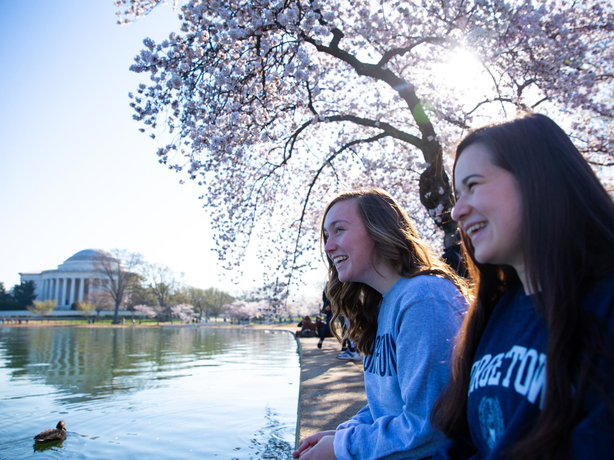 Two students sit along the Tidal Basin with the Jefferson Memorial and cherry blossoms in the background.