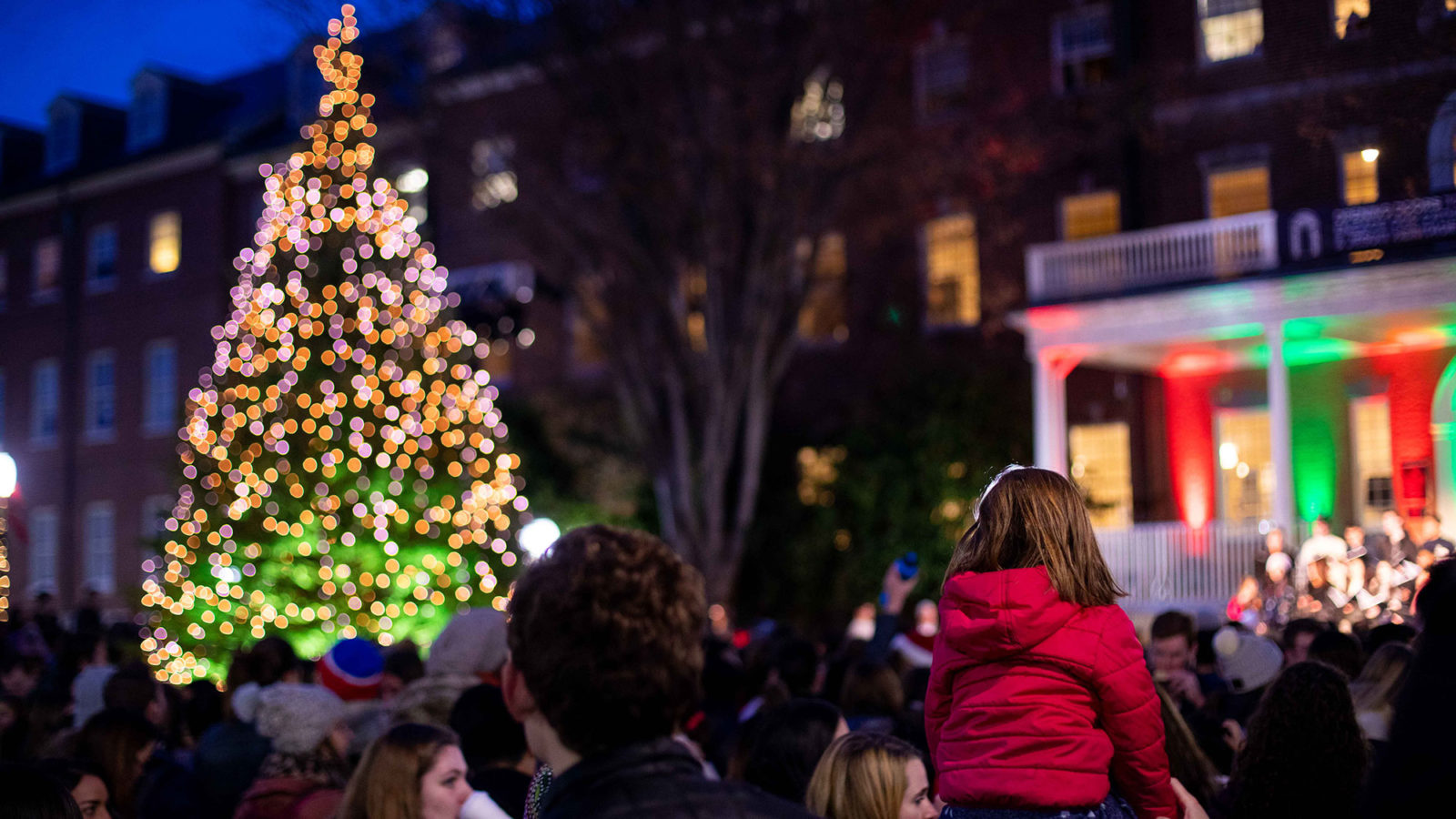 A man holds a child on his shoulders as they watch a tall Christmas tree being lit in the evening.