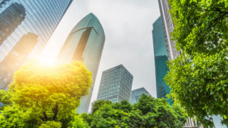 view from below of skyscrapers ascending toward clear skies among trees.