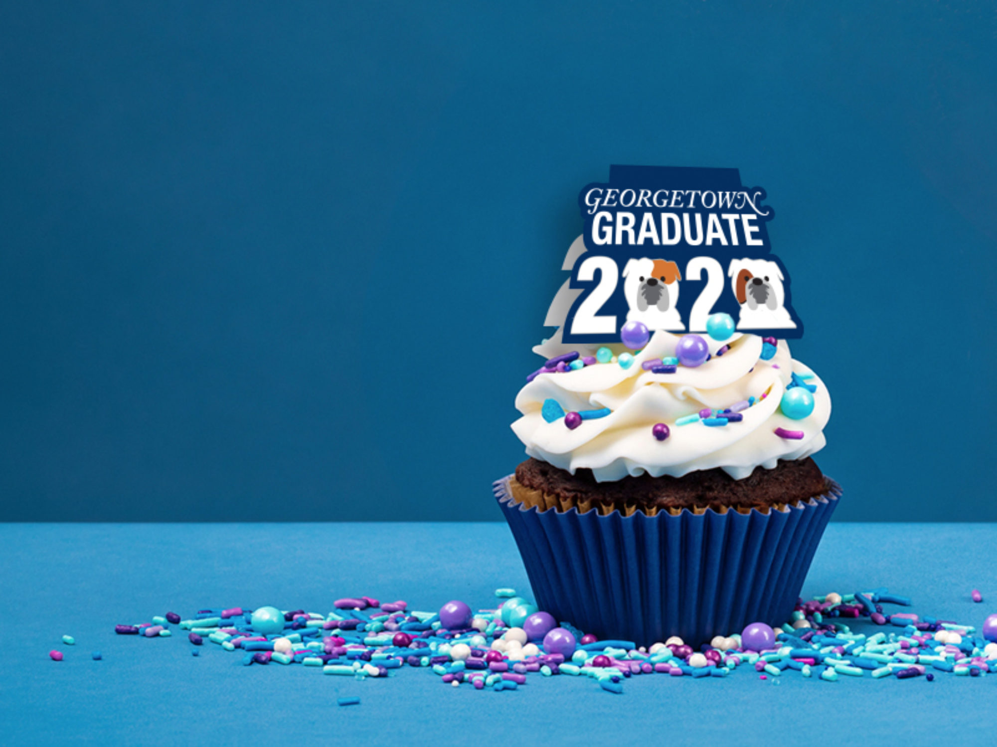 A blue cupcake with a topper that says