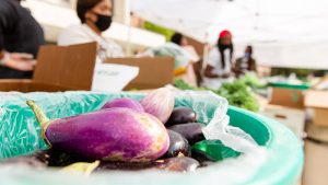 An eggplant and other produce sit in a bucket.