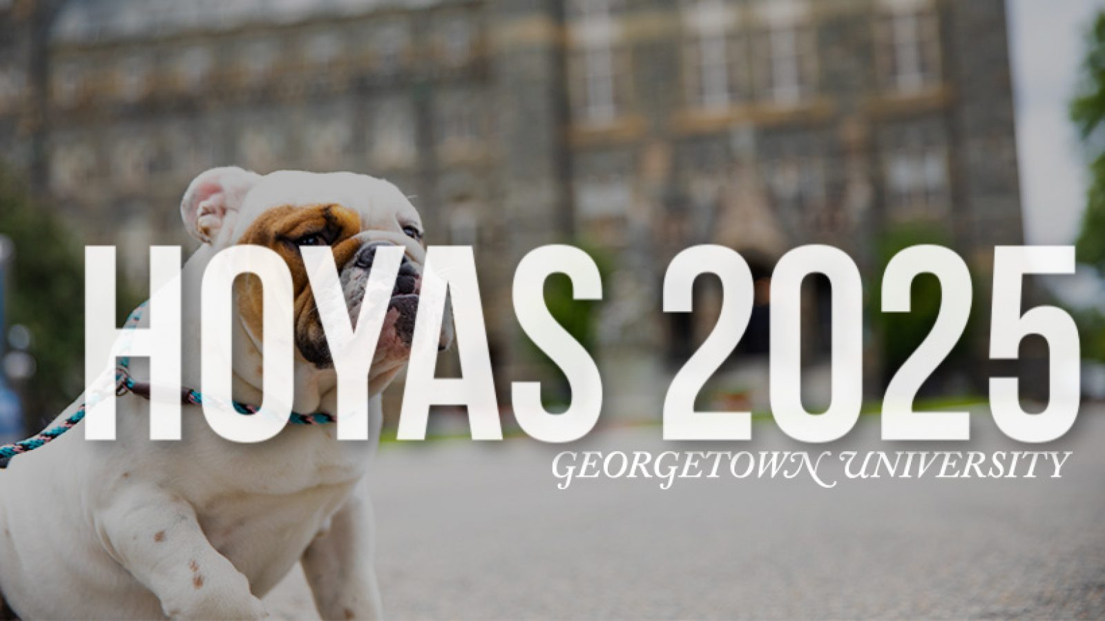 Text: Hoyas 2025 Georgetown University, Image: Jack the Bulldog in front of Healy Hall
