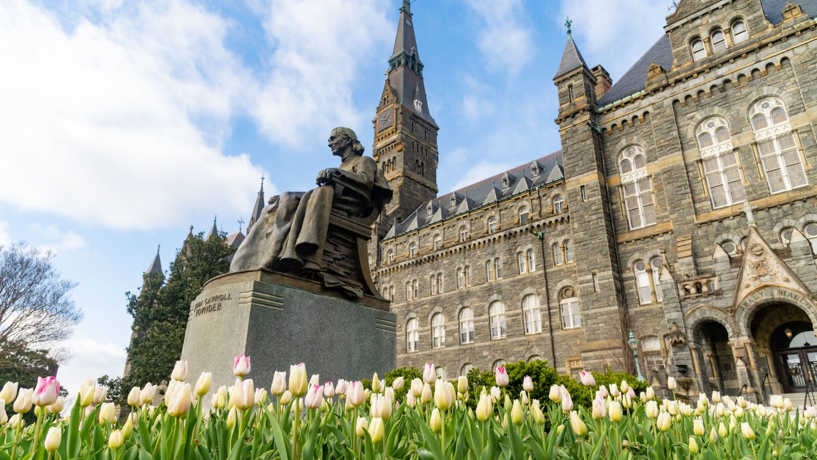 Tulips in front of John Carroll statue and Healy Hall