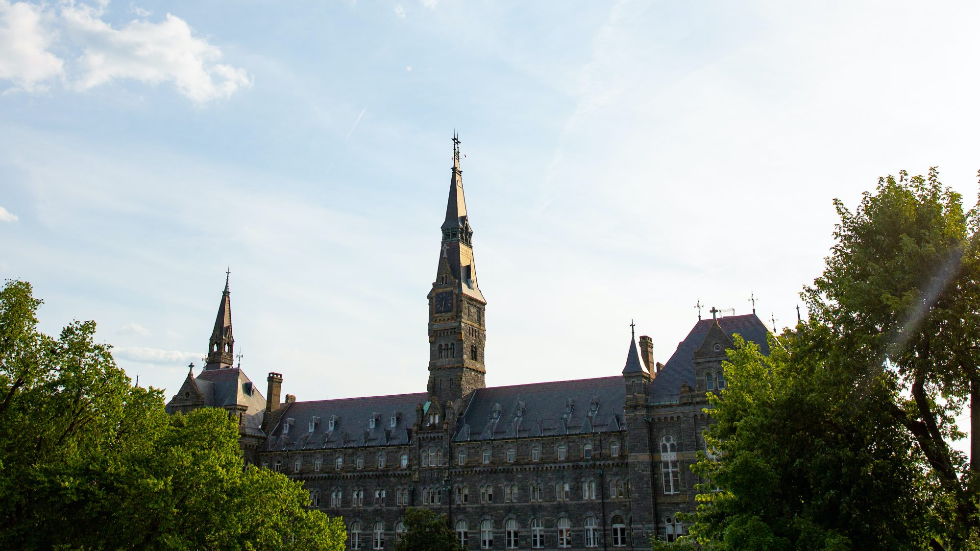 Sun shines behind a tree next to Healy Hall