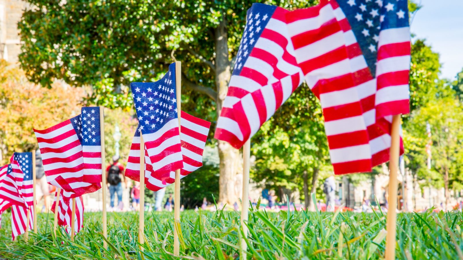 On the anniversary of 9/11 the campus is filled with American flags.