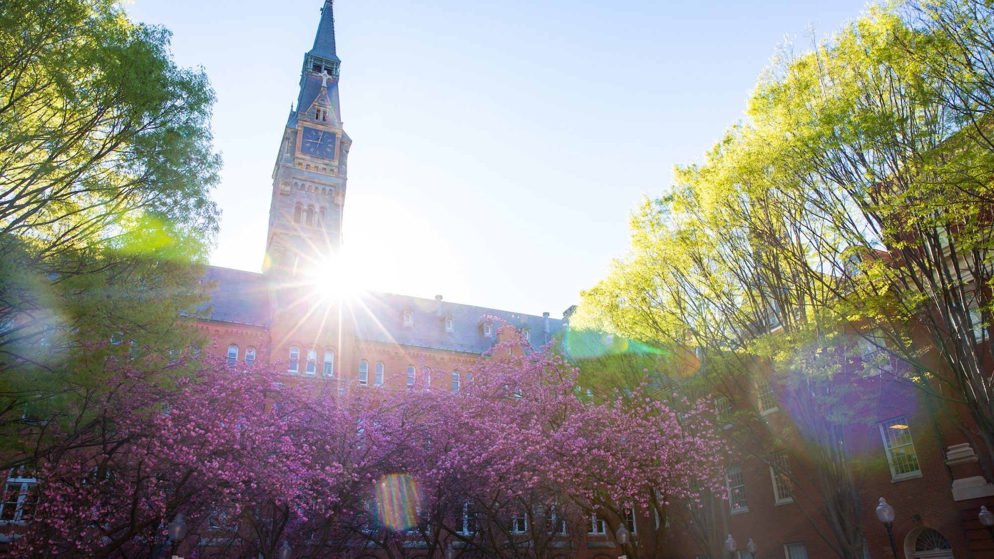 Sun flare behind Healy Hall during spring time