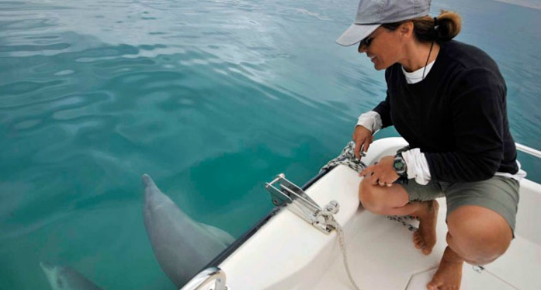 Janet Mann squats down near two dolphins in boat