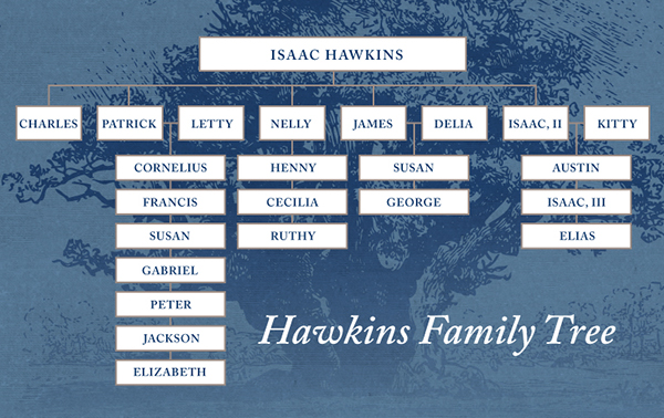 diagram of the Hawkins' family tree