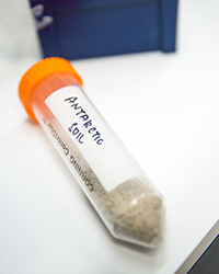 a sample soil from Antarctica sits labeled on a table