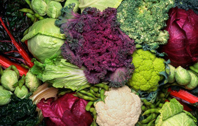 A photo of a collection of cruciferous vegetables, including lettuce, broccoli, and cabbage.