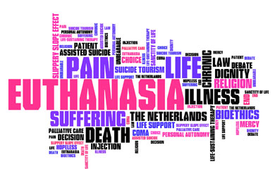 A word cloud with words such as euthanasia, pain and suffering