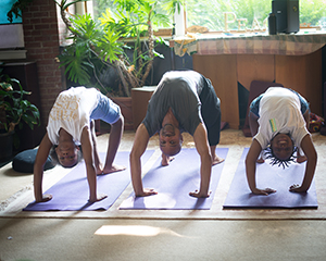 Three men doing upside down yoga post on yoga mats with plants behind them