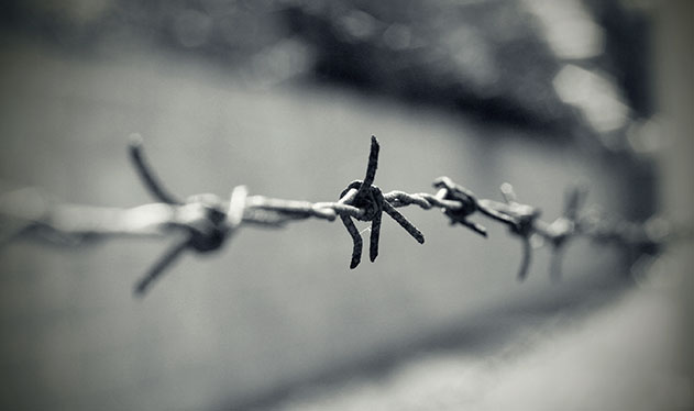Chain link fence during the Holocaust