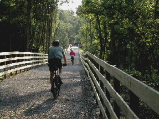 Two bikers bike along a path in the woods.
